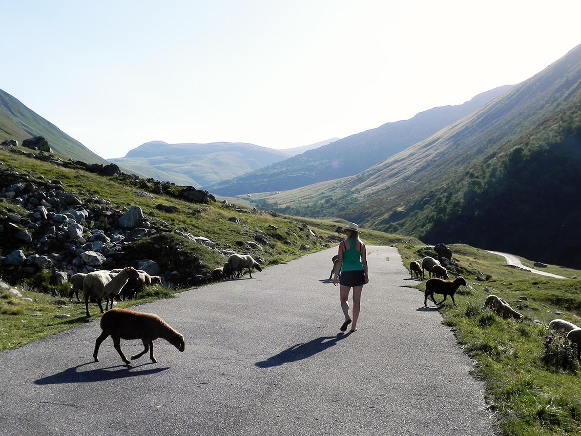 6 redenen om vandaag nog te beginnen met mindful wandelen